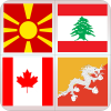 logo game Country Flags 1
